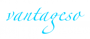 Vantageso Logo标志