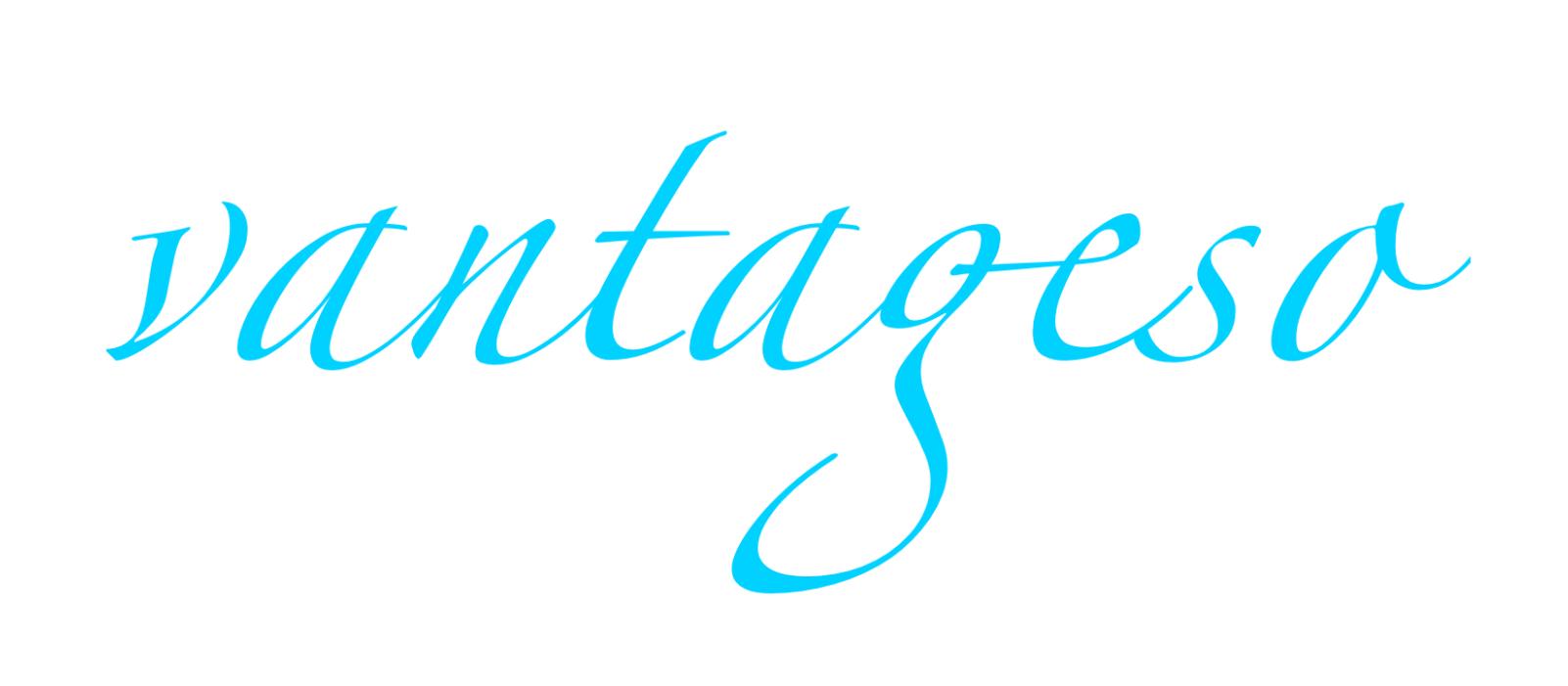vantageso-logo